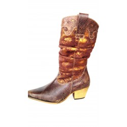 Leather cowboy boots in...